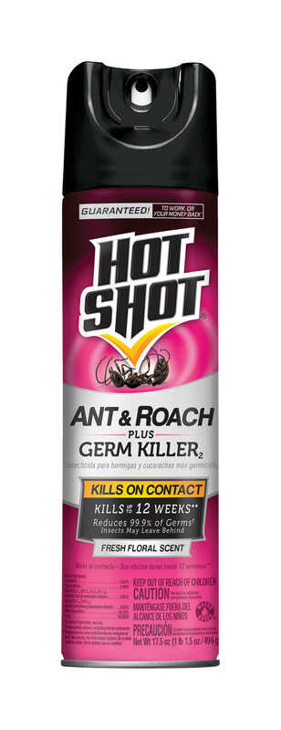 Hot Shot  Insect Killer  17.5 oz.