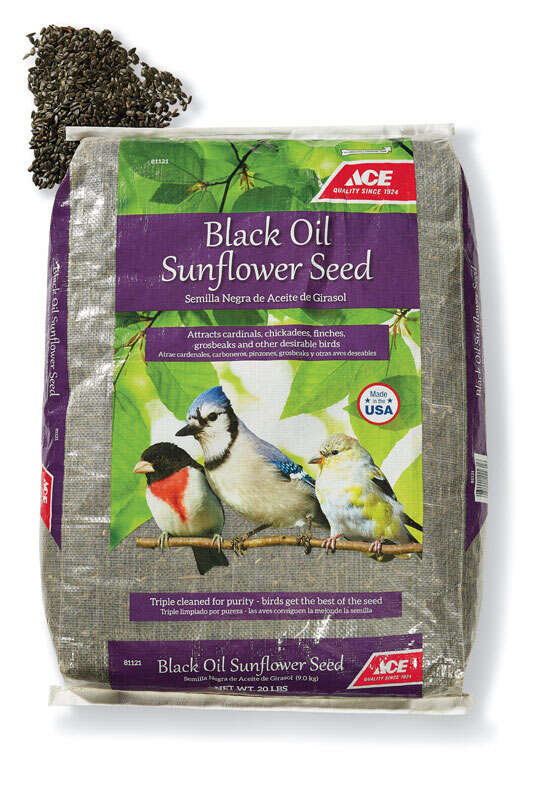Ace  Assorted Species  Black Oil Sunflower Wild Bird Food  Black Oil Sunflower Seed  20 lb.