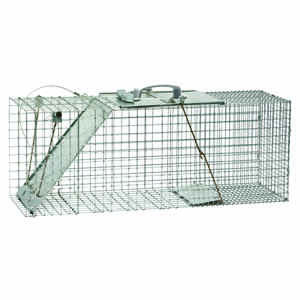 Havahart  Large  Live Catch  Animal Trap  For Armadillos, Cats, Raccoons 1 pk
