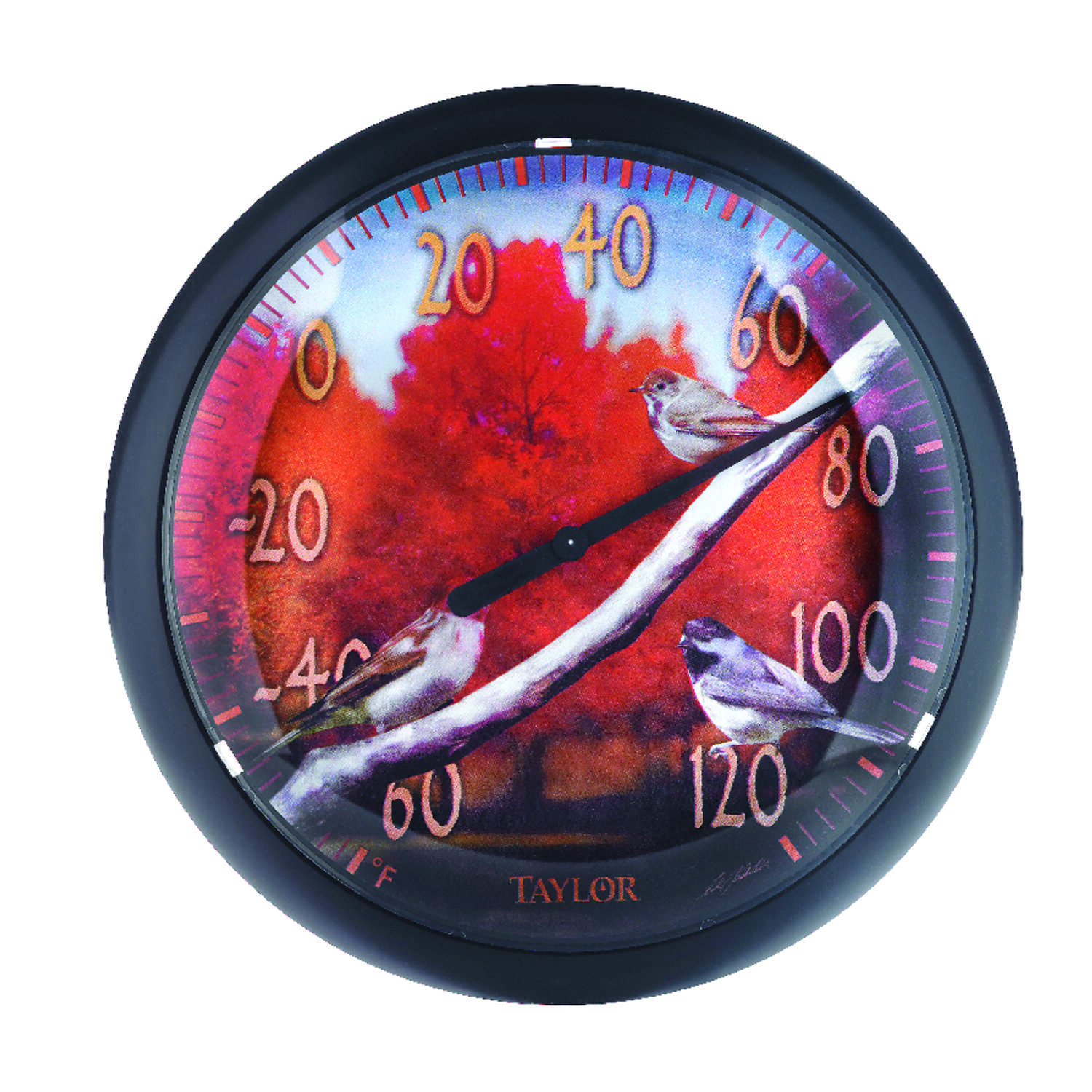 Taylor  Bird Design  Dial Thermometer  Plastic  Multicolored