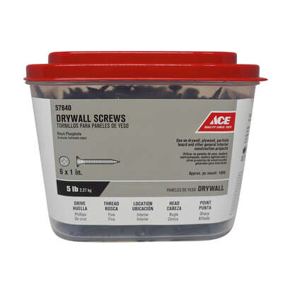 Ace  No. 6   x 1 in. L Phillips  Drywall Screws  5 lb. 1693 pk