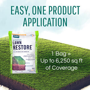 Safer Brand Ringer 9 0 2 Lawn Restore Fertilizer For All