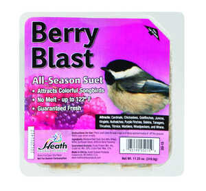 Heath  Berry Blast  Songbird  Suet  Beef Suet  11.25 oz.