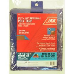 Ace  12 ft. W x 16 ft. L Medium Duty  Polyethylene  Tarp  Blue/Brown
