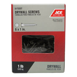 Ace  No. 6   x 1 in. L Phillips  Drywall Screws  1 lb. 339 pk