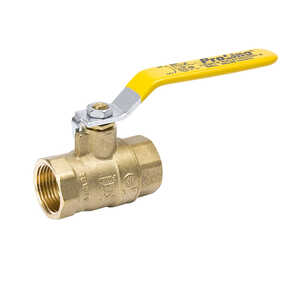 Mueller  Ball Valve  1 in. FPT   x 1 in. Dia. FPT  Brass  Packing Gland