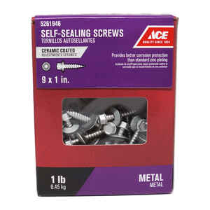 Ace  9 Sizes  x 1 in. L Hex Washer Head Ceramic  Steel  Self-Sealing Screws  1 lb.