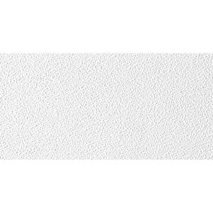 USG Sheetrock Brand  Non-Directional  48 in. L x 24 in. W 0.5 in. Square Edge  Ceiling Panel  1 pk