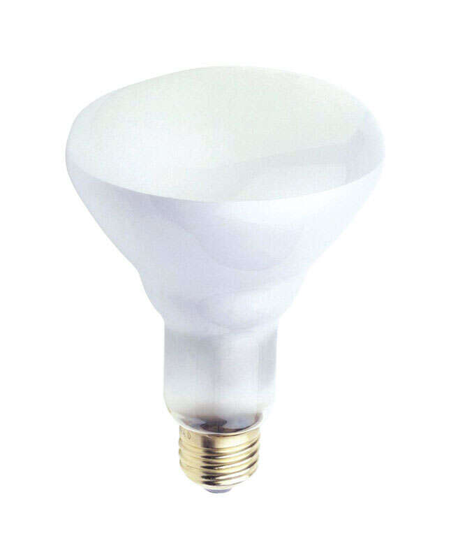 Westinghouse 65 watt BR30 Floodlight Incandescent Bulb E26 (Medium) White 12 pk