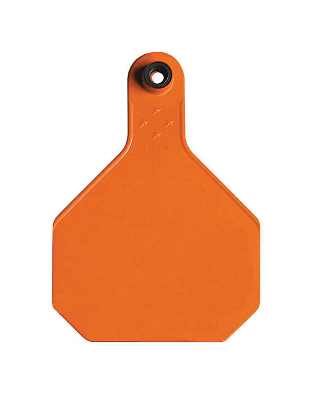 Y-Tex  Large Blank  Plastic  2-Piece Ear Tag