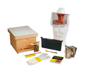 Little Giant  Beginner Hive Kit