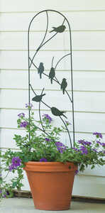 Panacea  40 in. H Black  Steel  Trellis