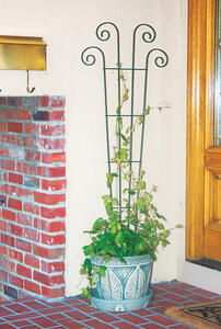 Panacea  48 in. H Black  Steel  Trellis