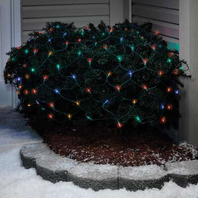 Celebrations LED Multi-color 100 count Net Christmas Lights 4 ft.