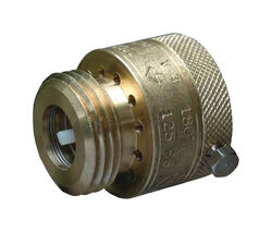 Cash Acme 3/4 in. FHT Brass Vacuum Breaker