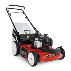 Toro Recycler 21378 22 in. 150 cc Gas Self-Propelled Lawn Mower