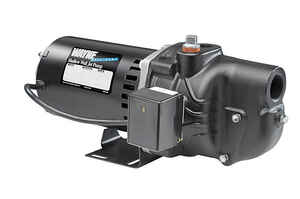 Wayne  1/2 hp 384 gph Cast Iron  Shallow Well Jet Pump