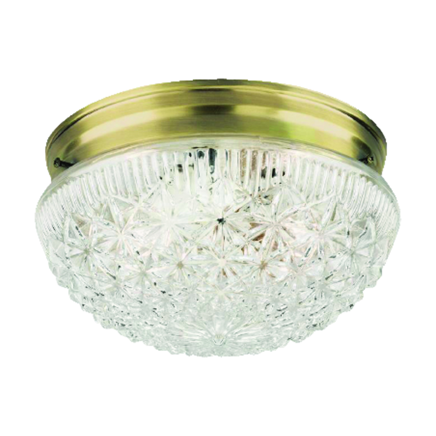 Westinghouse  9.5 in. L Ceiling Light