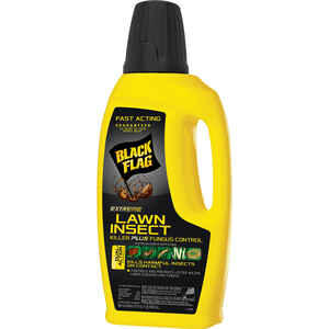Black Flag  Extreme  Insect Killer/Fungus Control  32 oz.