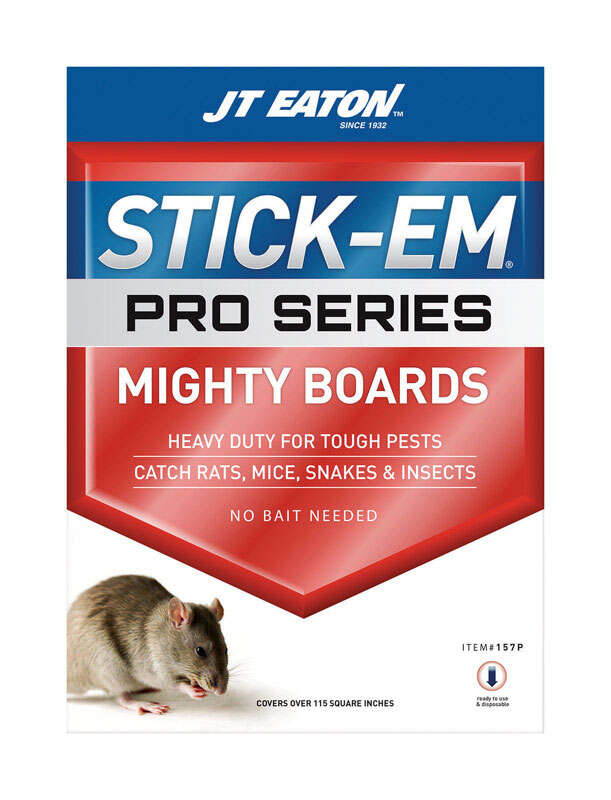 JT Eaton  Stick-Em Pro Series  Glue Board  For Insects, Rodents and Snakes 1 pk