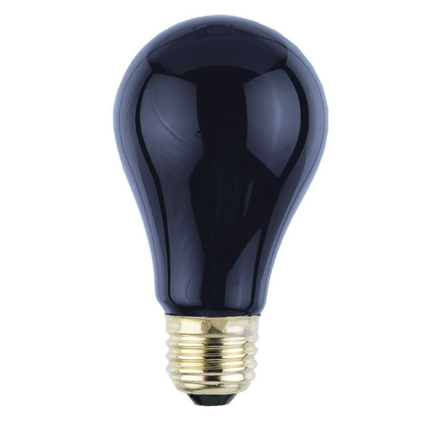 Westinghouse  75 watts A19  Incandescent Bulb  Black Light  1 pk A-Line
