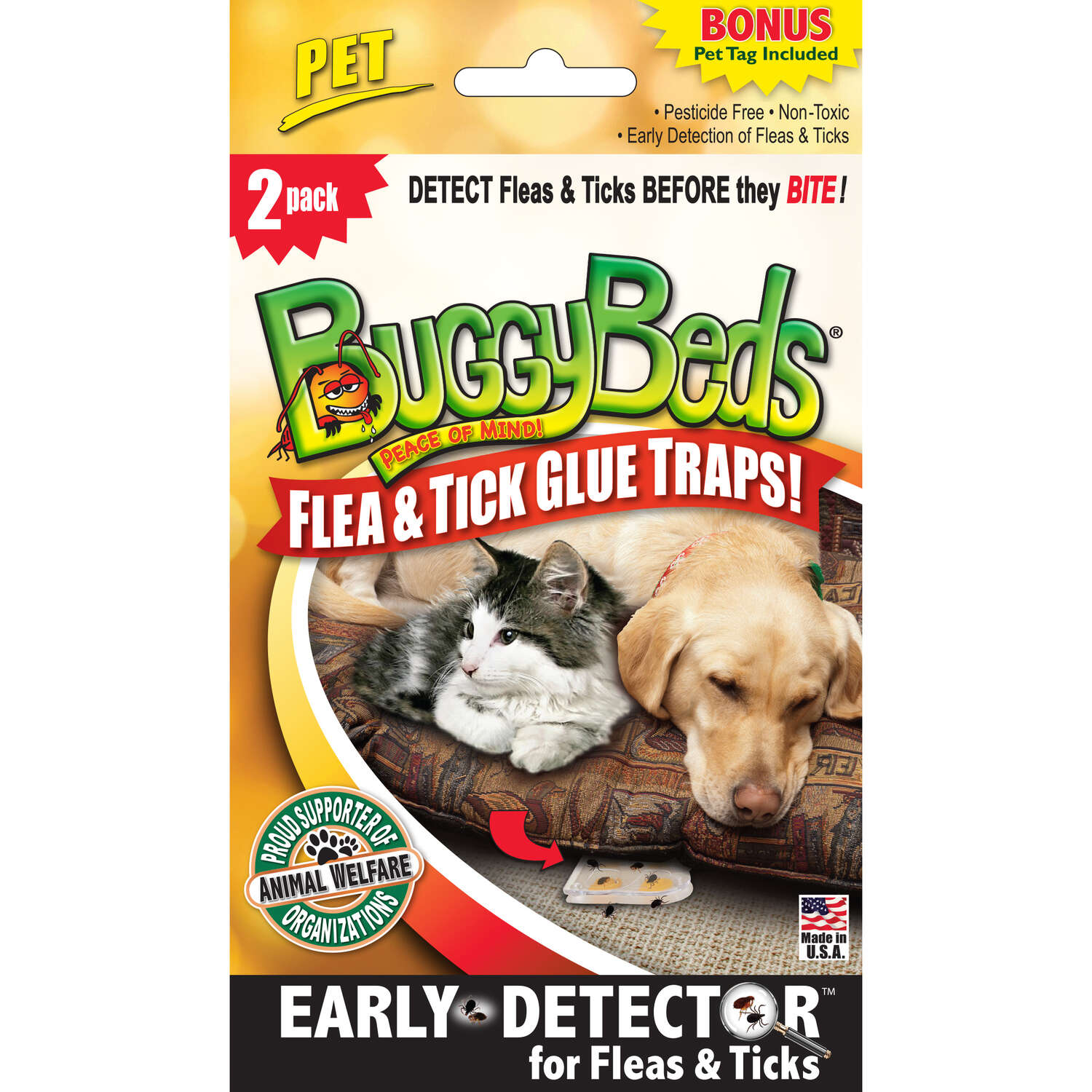 Buggy Beds Glue Trap 2 pk