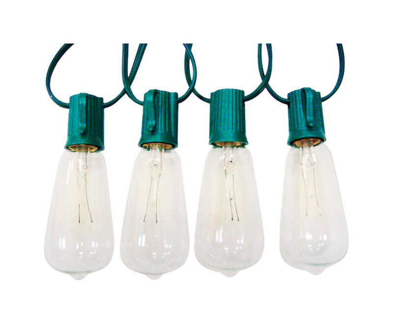 Celebrations  Edison  Christmas Light Bulbs  Clear  10 pk