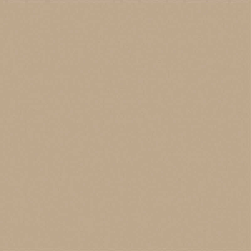 Beyond Paint  Matte  Khaki  Acrylic  All-In-One Paint Kit  1 pt.