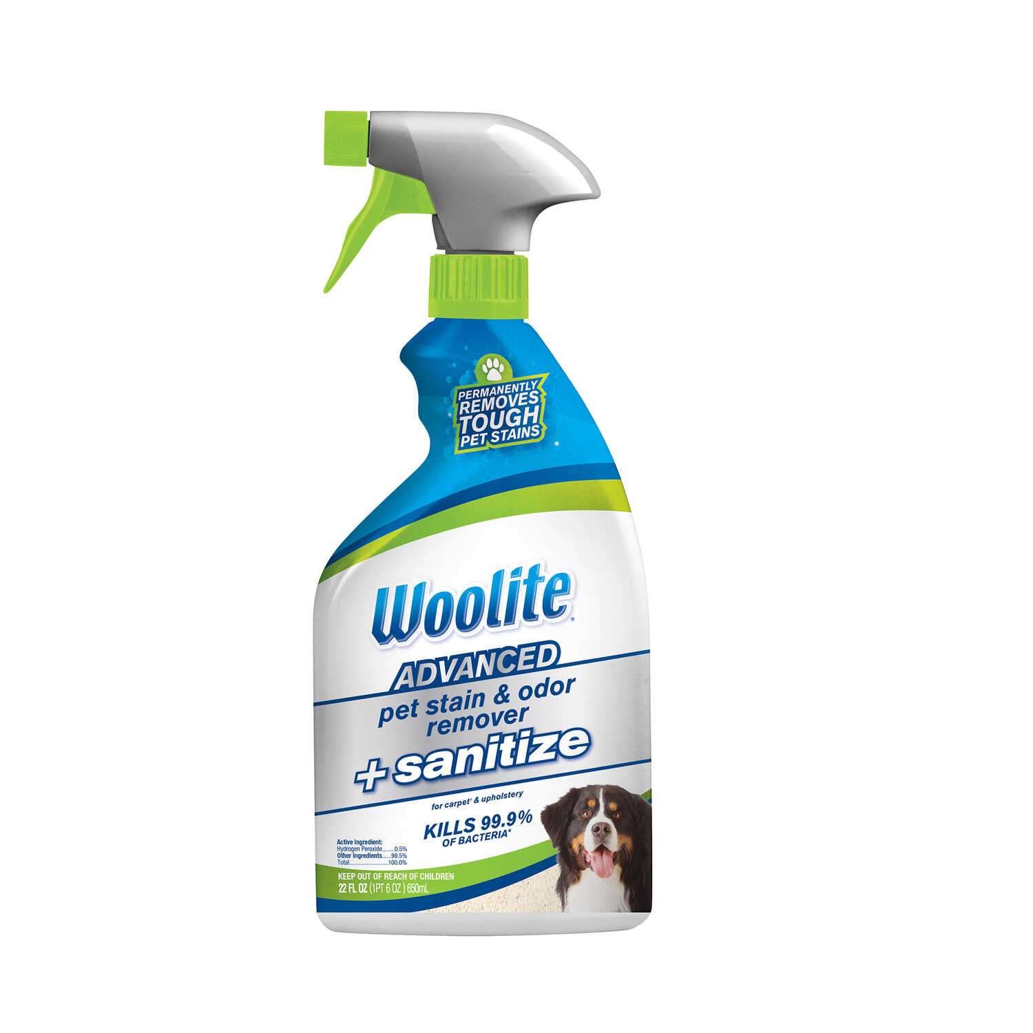 Woolite  Advanced  Pet Stain Carpet Cleaner  22 oz. Liquid