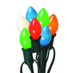 Celebrations  Incandescent  Multicolored  25 count Light Set  25 ft.