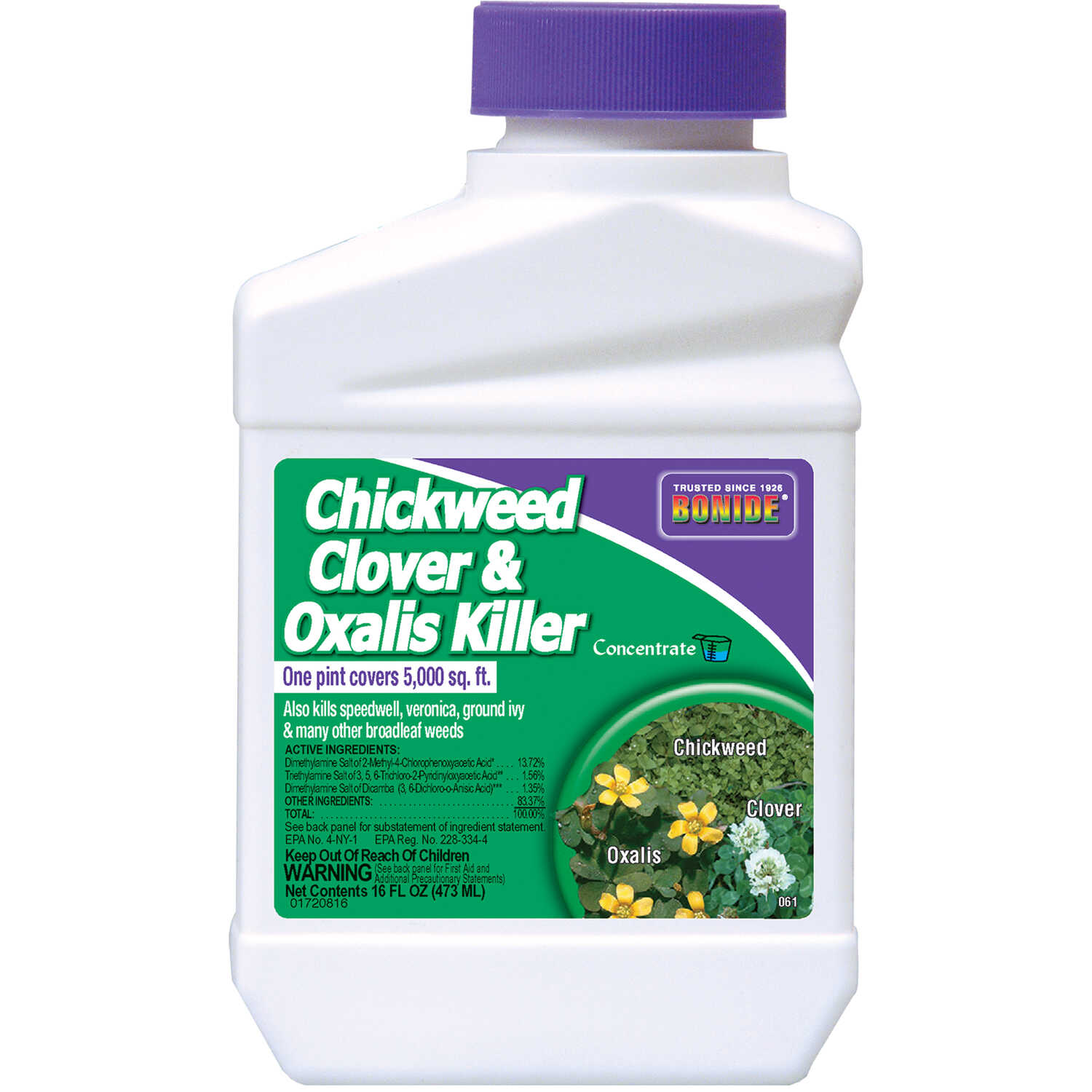Bonide  Chickweed, Clover and Oxalis Killer  Concentrate  1 pt.