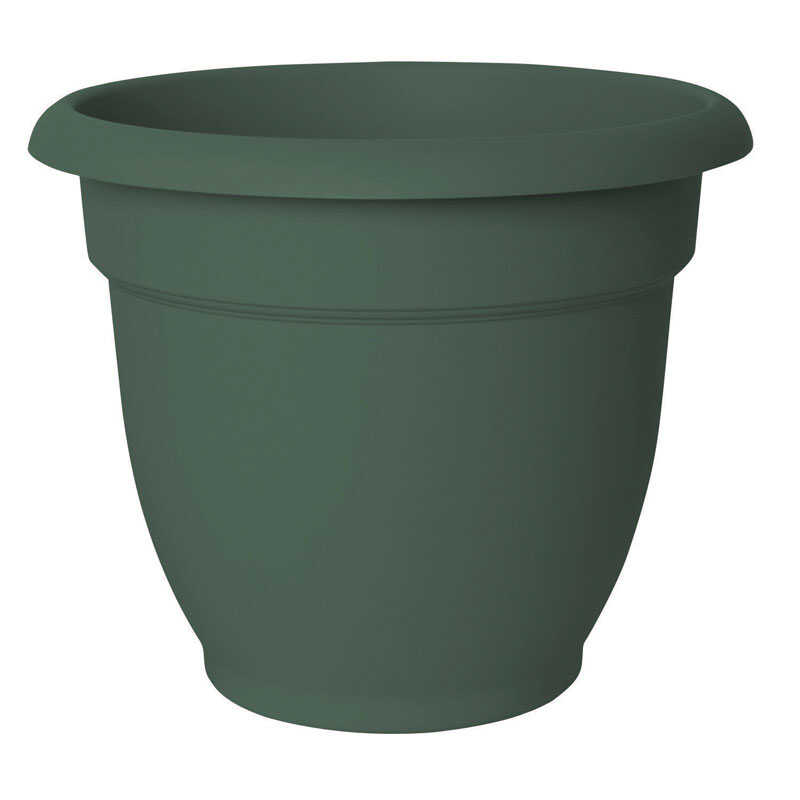 Bloem  8.5 in. H x 10 in. Dia. Resin  Ariana  Living Green  Planter