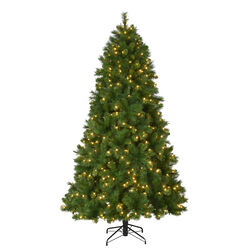 Celebrations 9 ft. Full Incandescent 850 count Concord Cashmere Color Changing Christmas Tree