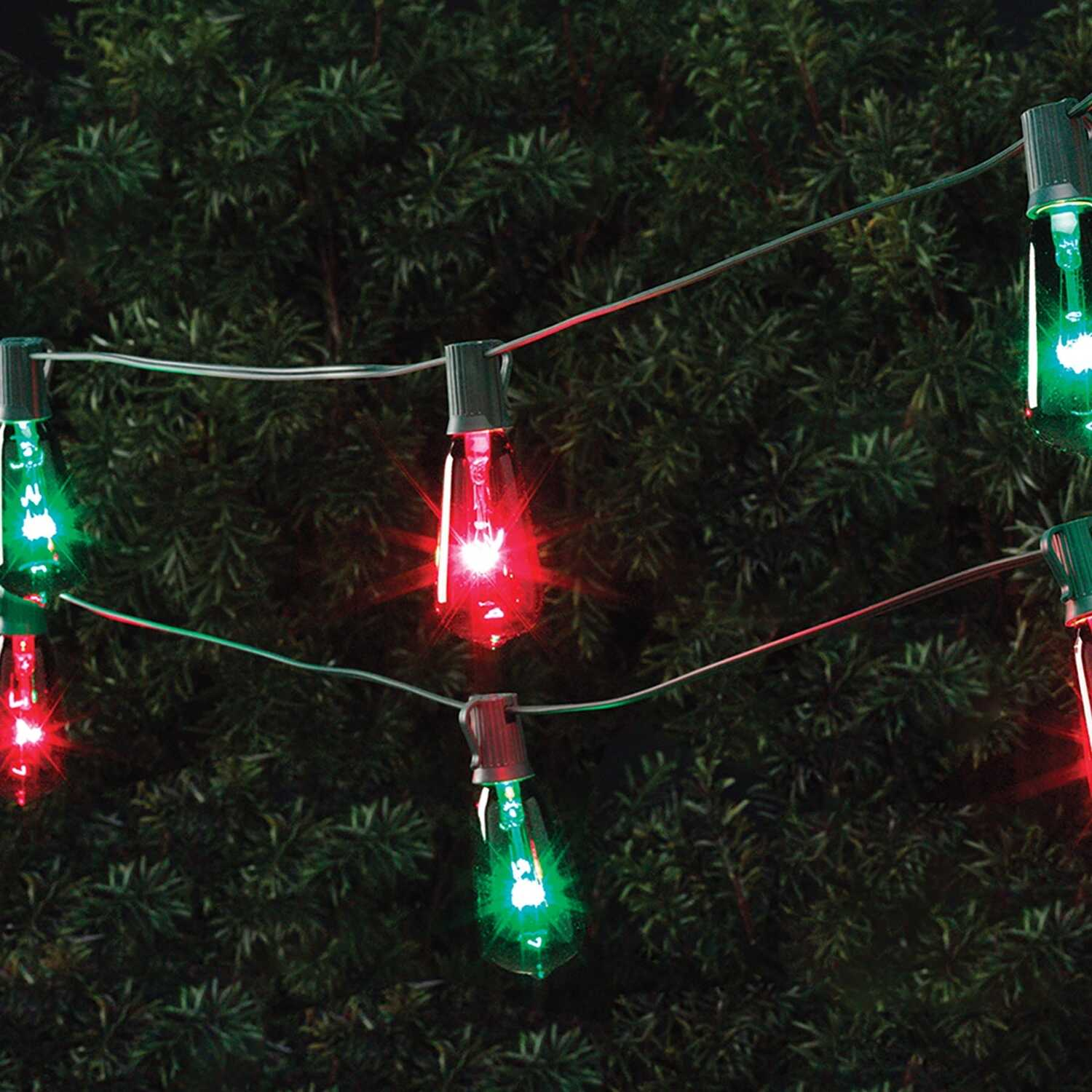 Celebrations  Mini  Light Set  Multicolored  9 ft. 10 lights