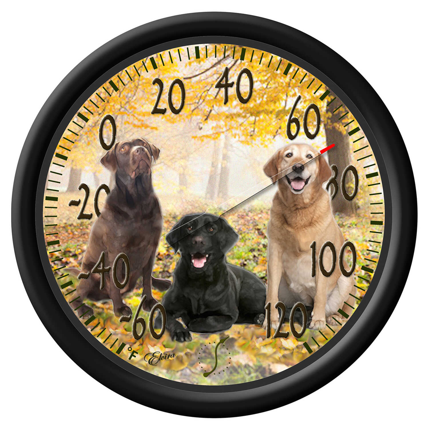 Taylor  Dogs Design  Dial Thermometer  Plastic  Multicolored
