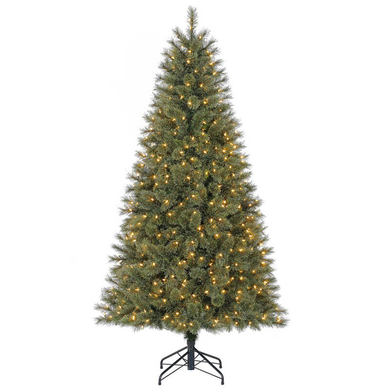 Polygroup  Warm White  Prelit Glittery Bristle Pine  7 ft. 500 lights 809 tips Christmas Tree