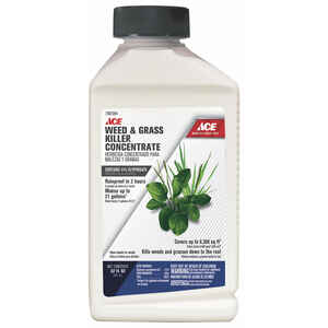 Ace  Weed and Grass Killer  Concentrate  32 oz.