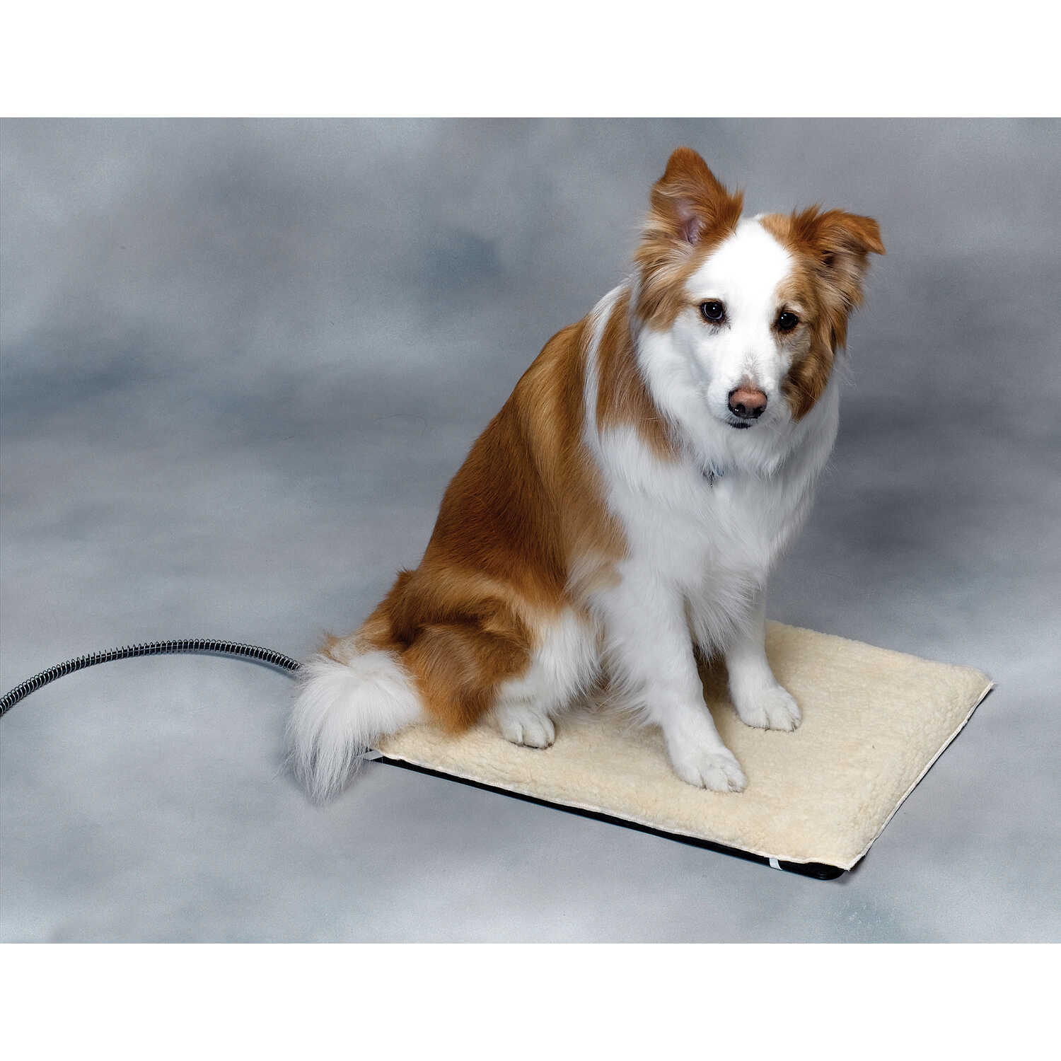 API  Poly Cotton  Heated Pet Mat  17 in. W x 24 in. L