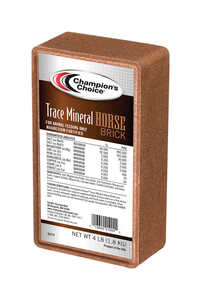 Champions Choice  Salt Brick  For Horse