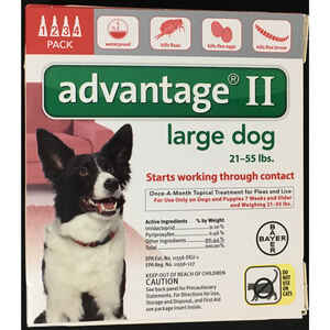 Bayer  Advantage II  Liquid  Dog  Flea Drops  4 pk