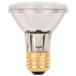 Westinghouse  eco-PAR PLUS  38 watt Reflector  Halogen Flood Light Bulb  500 lumens Warm White  1 pk