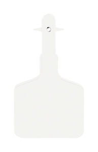 Y-Tex  Lone Star  Medium Blank  Plastic  1-Piece Ear Tag