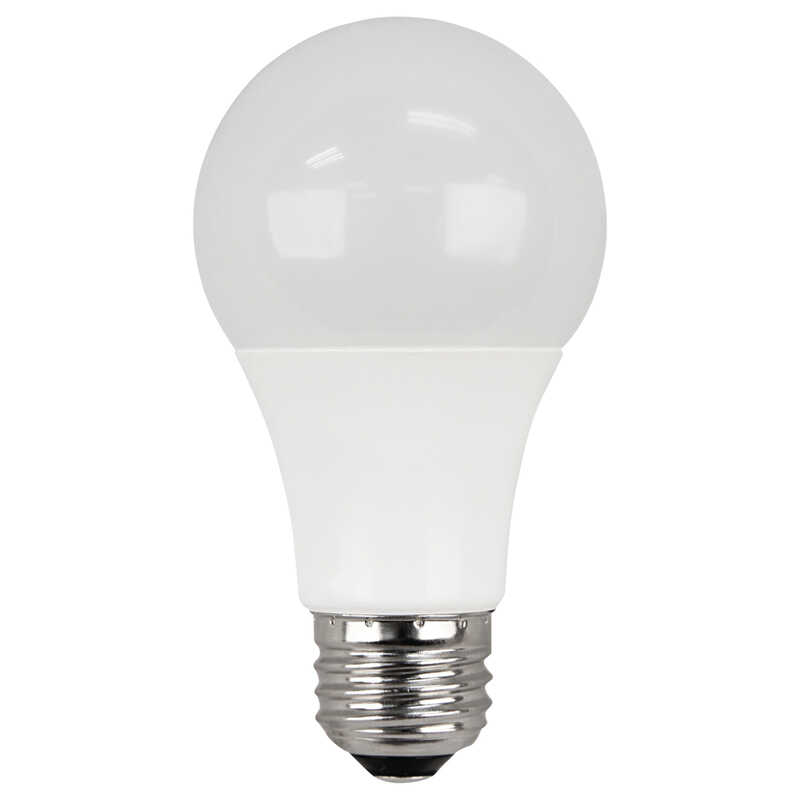 Ace  6 watts A19  LED Bulb  450 lumens Soft White  40 Watt Equivalence A-Line