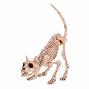 Seasons  Skeleton Kitty Bonez  7 in. H x 6 in. W x 20 in. L 1 pk Halloween Decoration