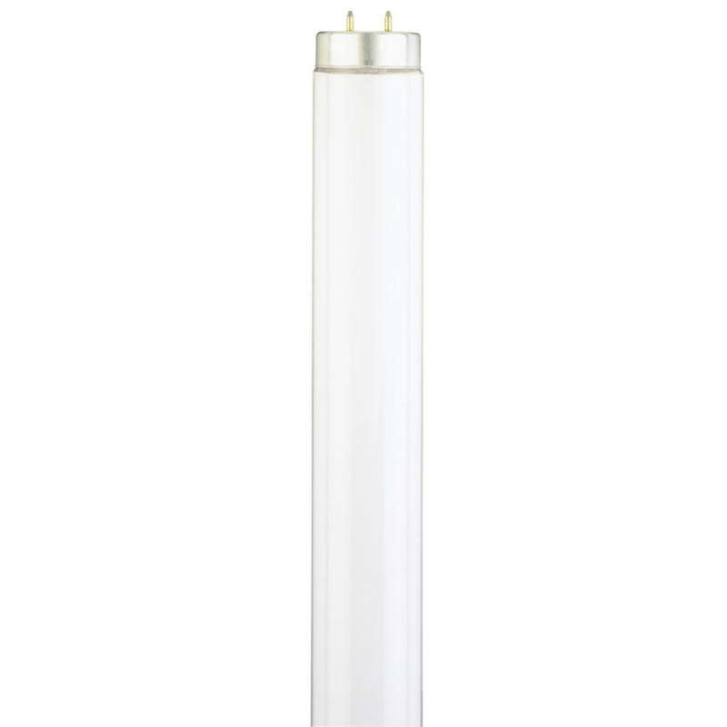 Westinghouse  40 watt T12  48 in. L Fluorescent Bulb  Cool White  Linear  4100 K 1 pk