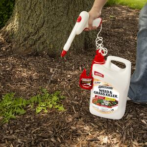 Spectracide  Accushot  Weed and Grass Killer Refill  RTU Liquid  1.33 gal.