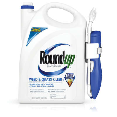 Roundup  Comfort Wand  Weed and Grass Killer  RTU Liquid  1.1 gal.