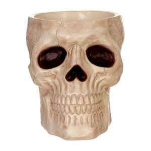 Seasons  Skull Candy Bowl  8-1/2 in. H x 7-9/16 in. W x 9-1/2 in. L 1 each Halloween Decoration