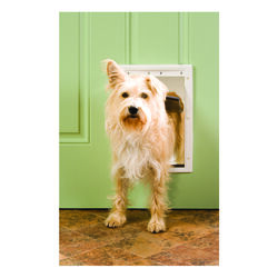 Petsafe 14 in. H x 9.25 in. W Plastic Pet Door