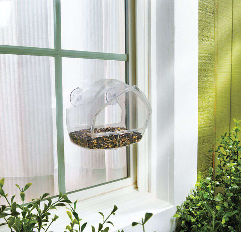 Perky-Pet  Wild Bird  0.5  Plastic  Bird Feeder  1 ports